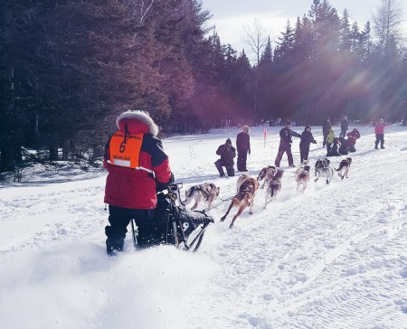 Luc Gaudreau of St. Denis de Brompton, Quebec takes off out of the race chute at the beginning of Saturday's 70-mile competition in the Wilderness Sled Dog Races near Greenville. (Courtesy Meghan Agrell)