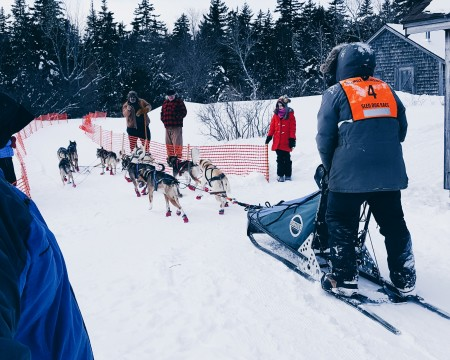 David Boyer of Quebec passes through the checkpoint at West Branch Pond camps during Saturday's 70-mile competition in the Wilderness Sled Dog Races near Greenville. (Courtesy Meghan Agrell)