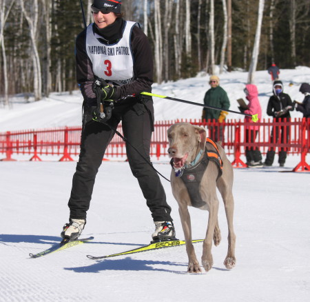 Anne O'Donnell crosses the finish line during one of the skijoring races at Fort Kent Outdoor Center, Sunday, March 5. (Don Eno   SJVT/FhF)